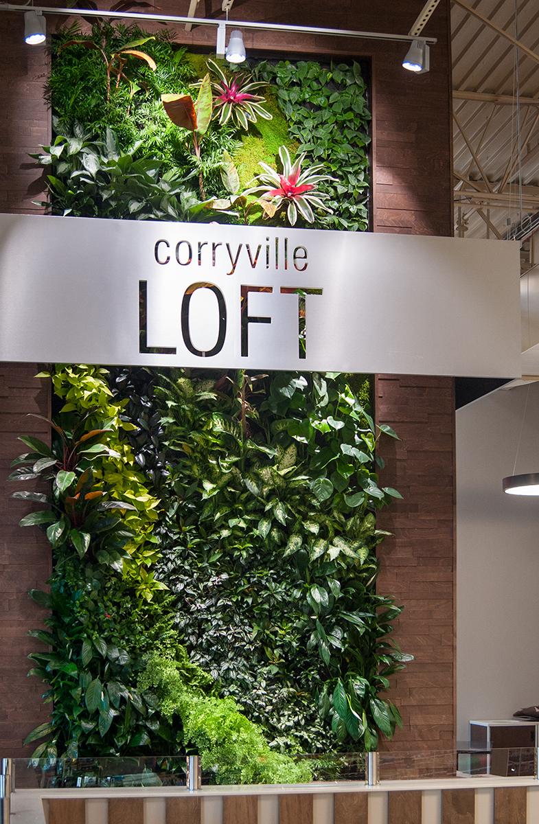Corryville Kroger -