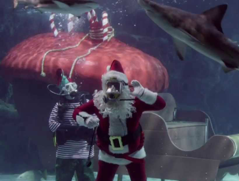 Ed Evans, the Newport Aquarium's lead Santa, waves to an audience of children as sharks swim by overhead.  Photo Credit: The New York TImes