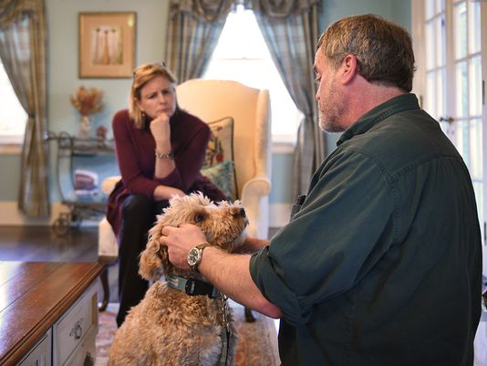 Dog trainer Corey Cohen soothes Finn.  Photo: Anne-Marie Caruso/Northjersey.com