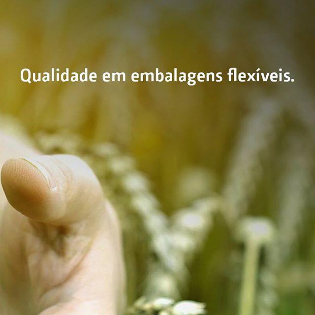 Fiabesa – Qualidade em embalagens flexíveis. . . . #Fiabesa #Embalagem #EmbalagensFlexiveis #Qualidade #Etica #Transparencia #Protecao #Armazenamento #Resistencia #Sacaria #Rafia