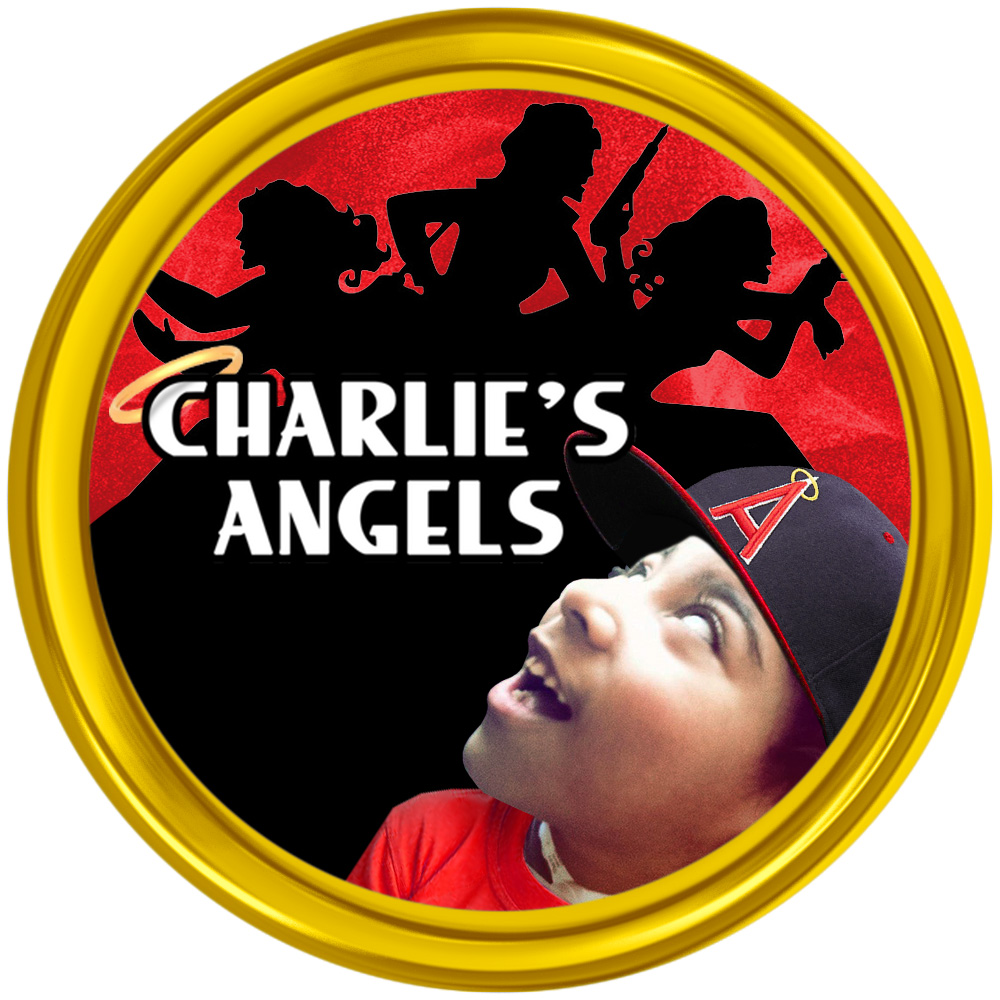 Charlie's Angels - a fundraising organization for profound children.