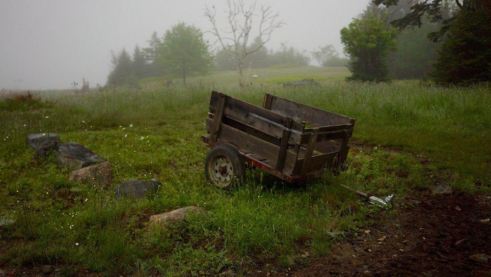 nk-cart.jpg