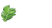Redwood Midwifery