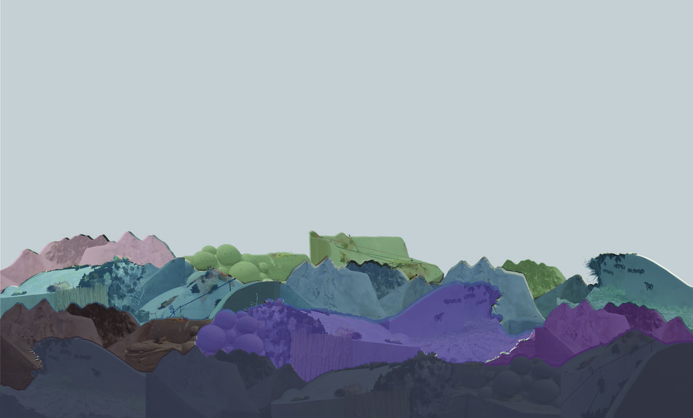complex landscape. copy.jpg