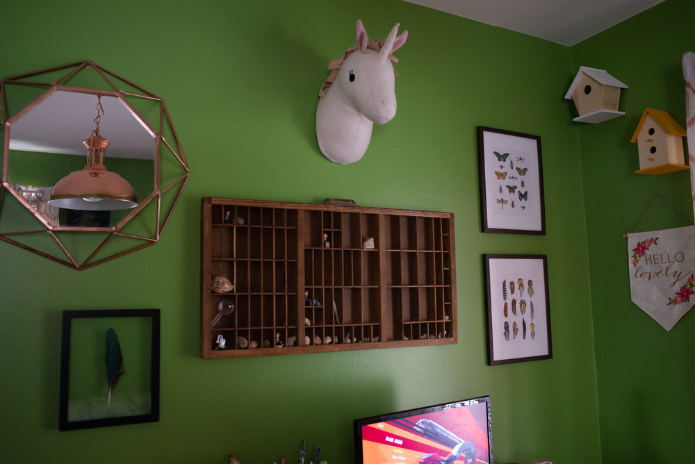Green Dinosaur/Museum/Naturalist Bedroom