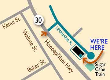 991 Limahana Place Suite 4H Lahaina, Maui, Hawaii 9676