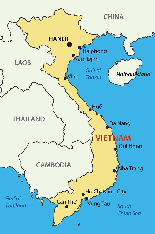 Vietnamese Beans