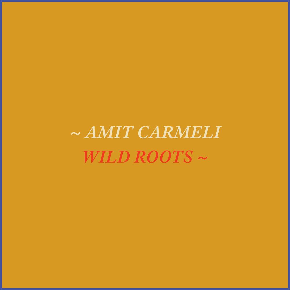 amit_carmeli_wild_roots_vocal_journey.jpg