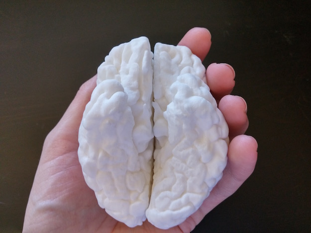 3D-printed_brain.jpg