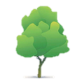 tree icon 1_rev_2.png