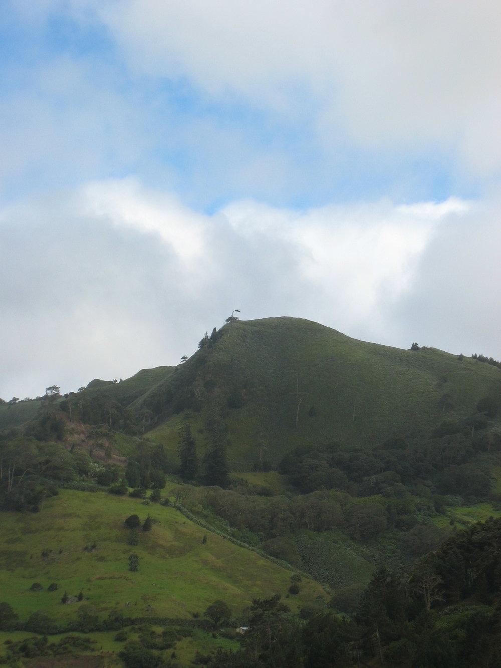 St Helena Terrain 2.jpg