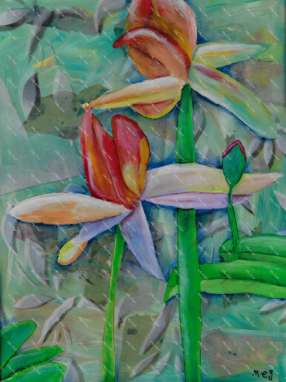 Flower Lillies