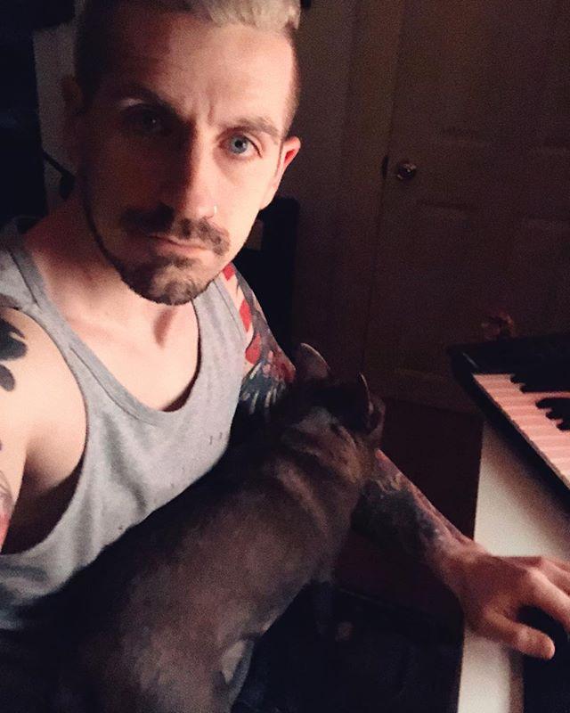 Studio dog 🐶 #mittenguy