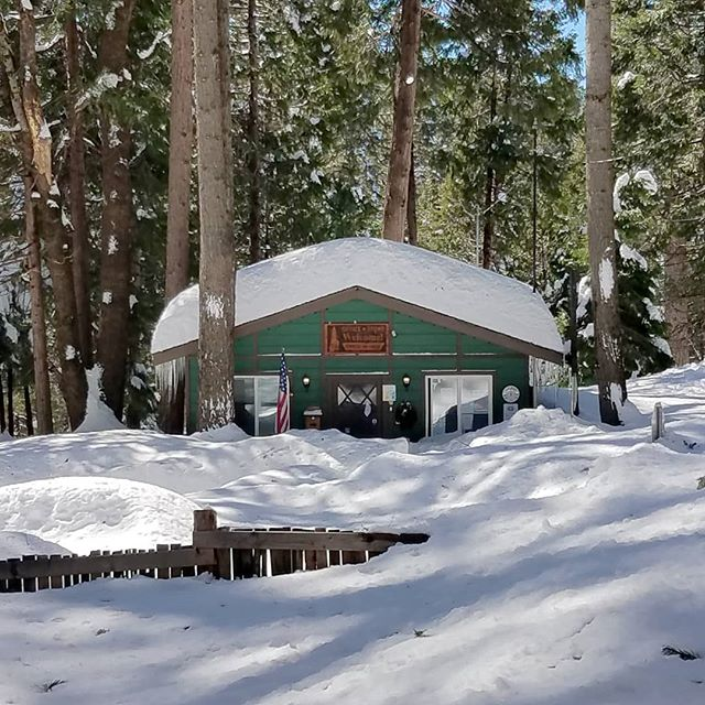 Just waiting for our snow to melt! We're keeping our fingers crossed that these blue skies stick around and the snow decides to move on to somewhere else. Our trees are happy, and hopefully we're in for a beautiful summer of camping!