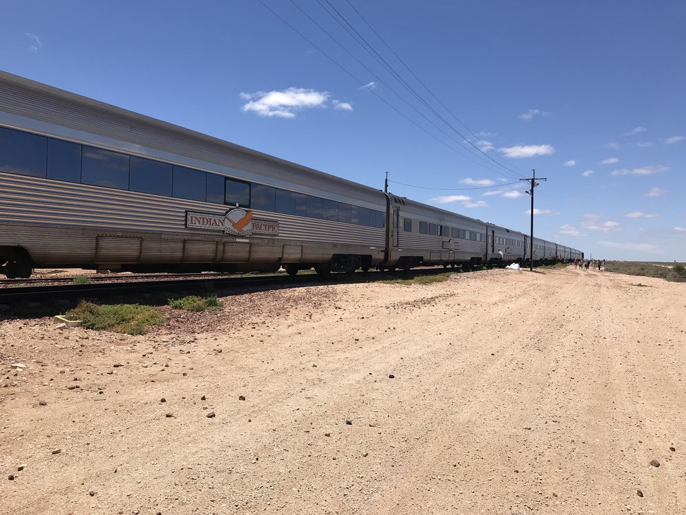 Indian Pacific train in Cook, Australia