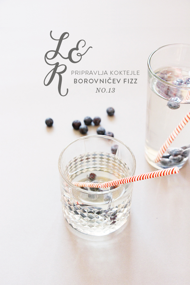 lr-koktejl-brusnice-1