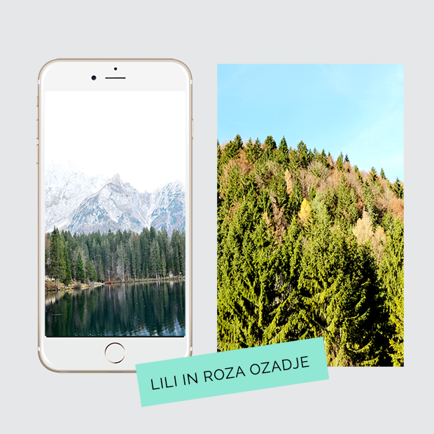 liliinroza_wallpaper_background_1