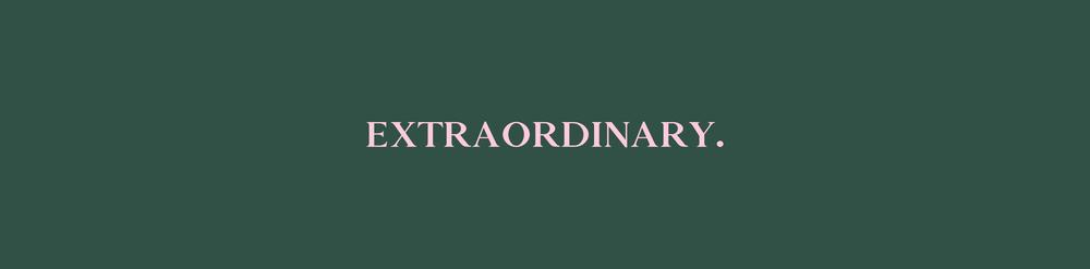 LR_bannerji_trgovine_Extraordinary.png