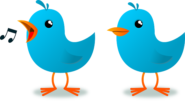 mascot-blue-cartoon-bird-website-animal-twitter