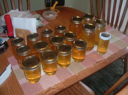 Honey from a Warre hive super