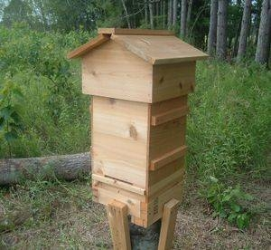 Warre hive on a simple stand