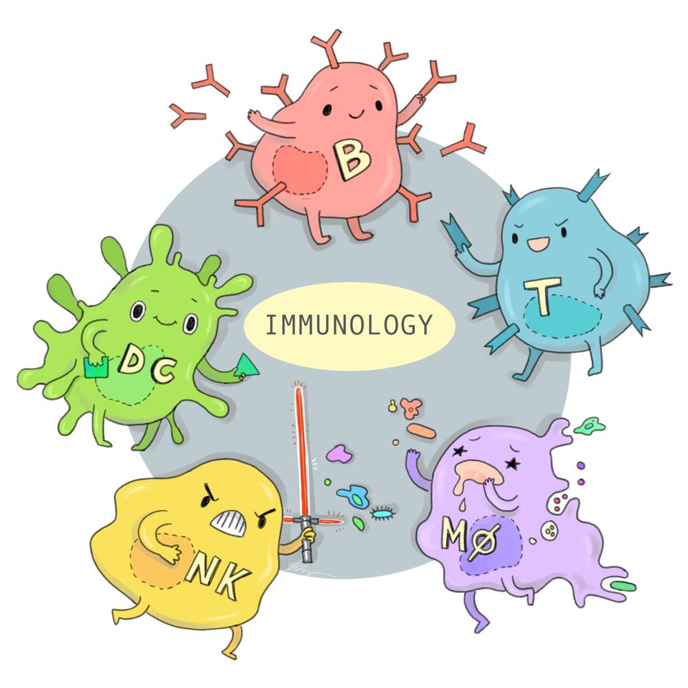immune-system-logo.png