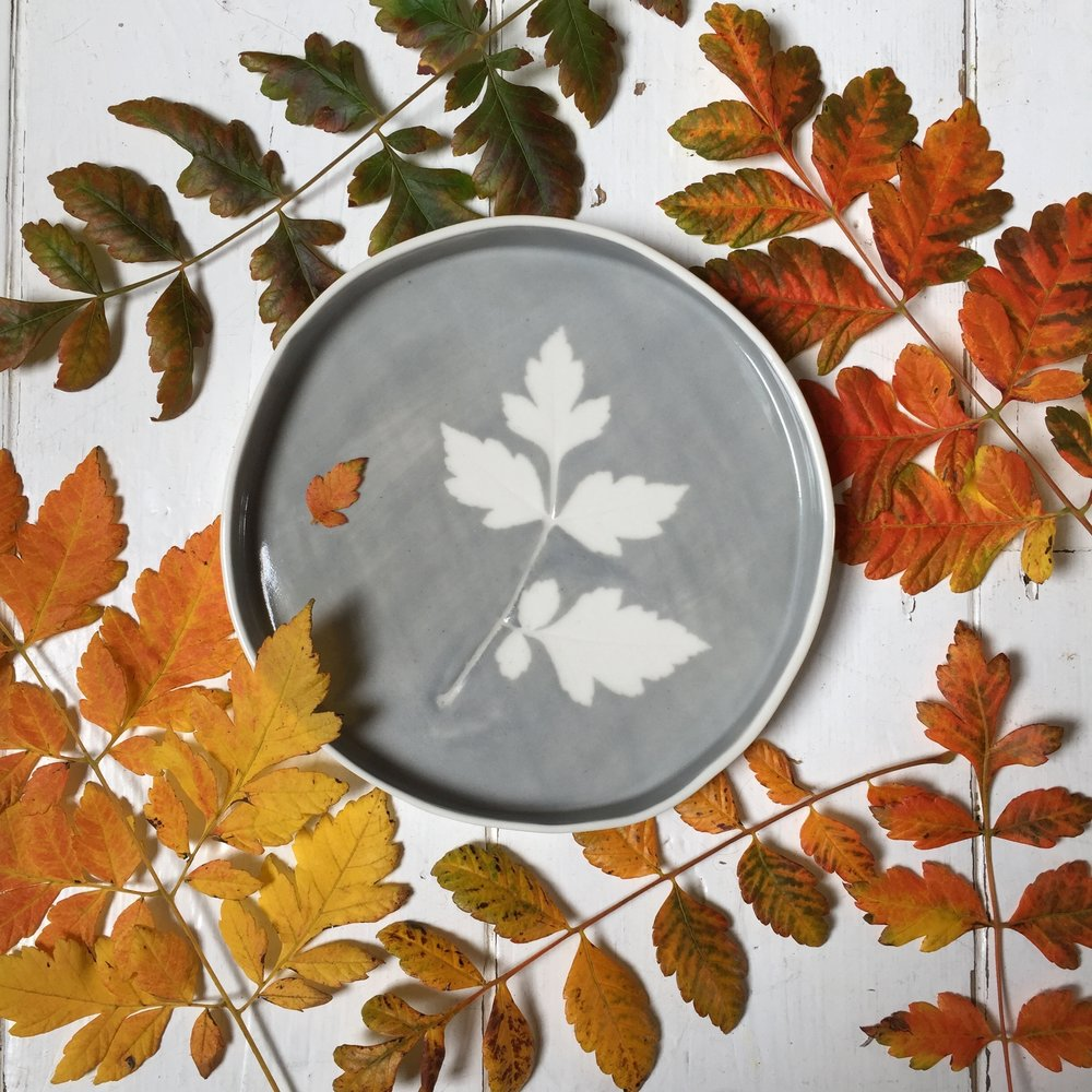 Large Soft Grey Leaf Dish   Made using real leaves and coloured slips, each piece is unique. Available in 10, 14 and 20 cm diameter.
