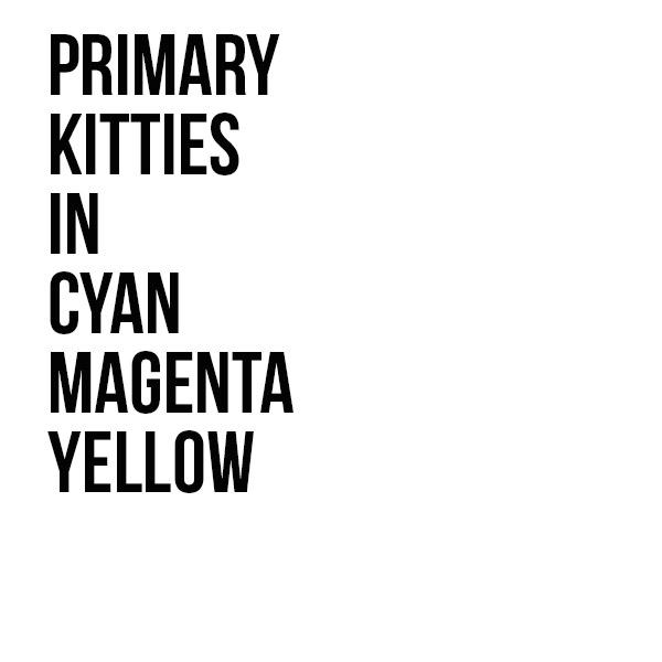 primary kitties.jpg