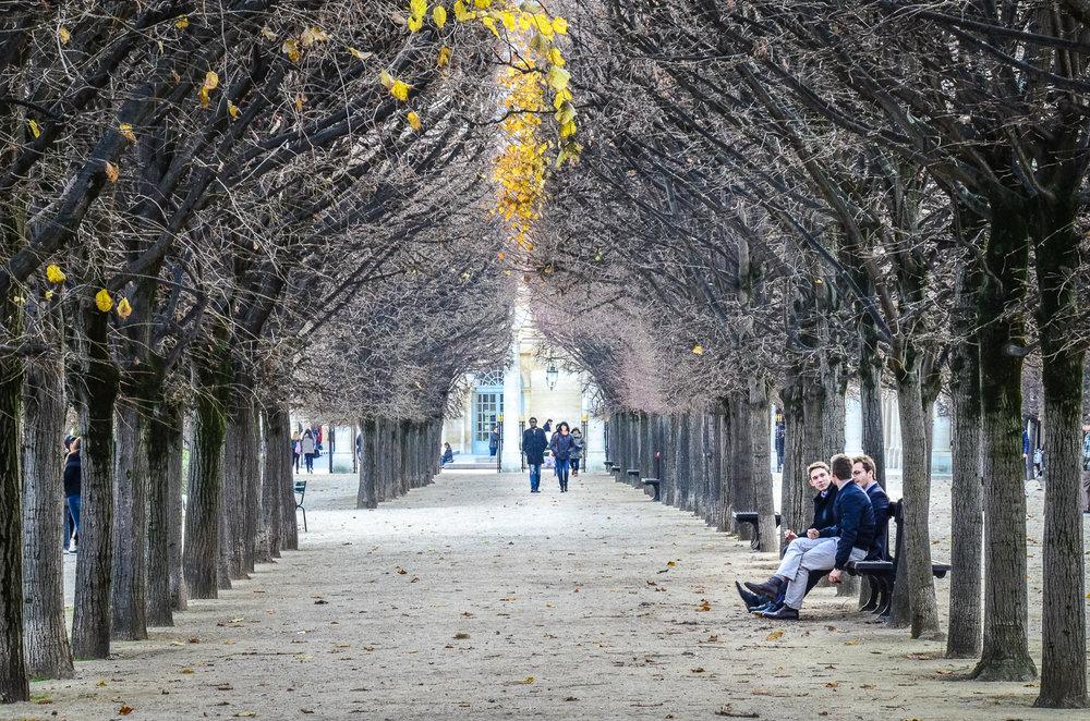 """PhotoMenton [France}""""La Nature en Ville"""" contest, 5th place, 18th November 2017"""