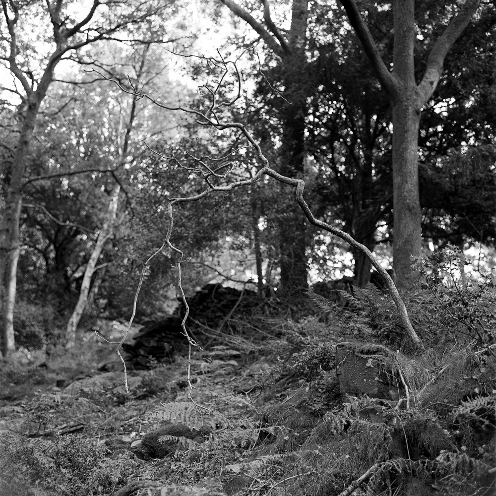 Cumbria_051.jpg