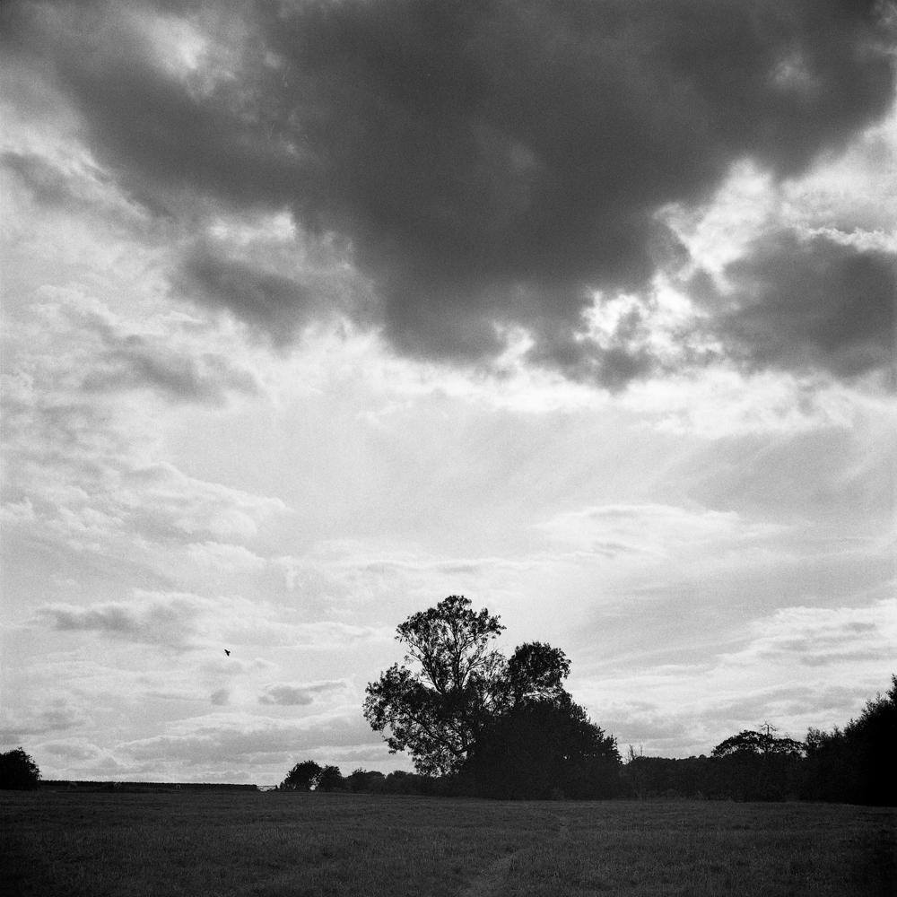 Wolverton_009.jpg