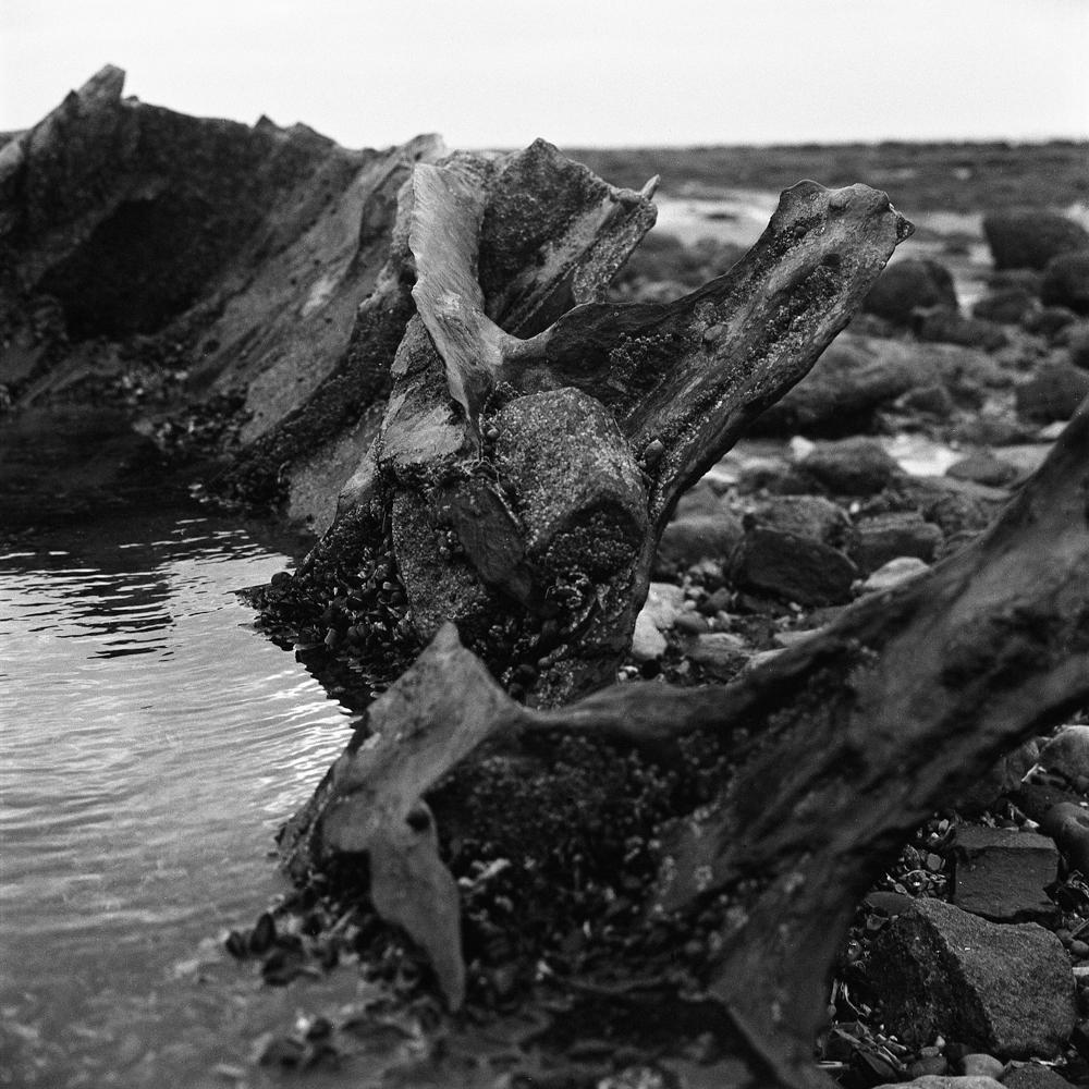 Shipwreck_004.jpg