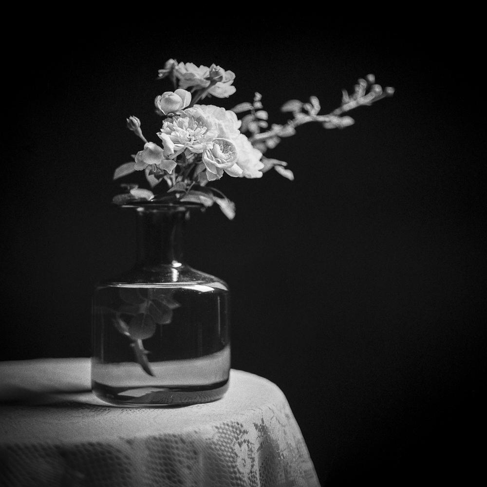 Bath&Roses010.jpg