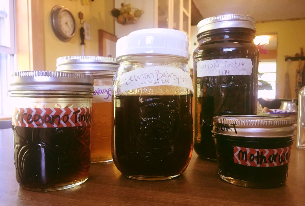 "Backyard Tinctures & Vinegars - by Elisabeth McCachren Mitchell""A few pots of herbs on a back stoop can add to the abundance. If you can accurately identify the plants in your yard, you can easily craft them into tonics that keep long after the green withers to brown."">> READ MORE"