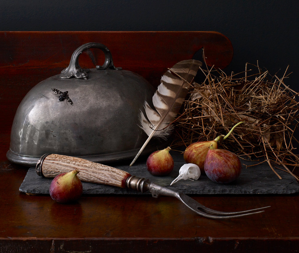 Still life composed by Collin Robison. Photo by Ellen McDermott. Featured in  CTC&G .