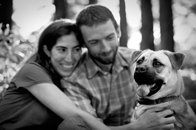 dogs at oakland engagement session in bay area