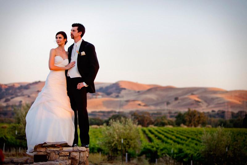 summer winery wedding in san francisco bay area, california