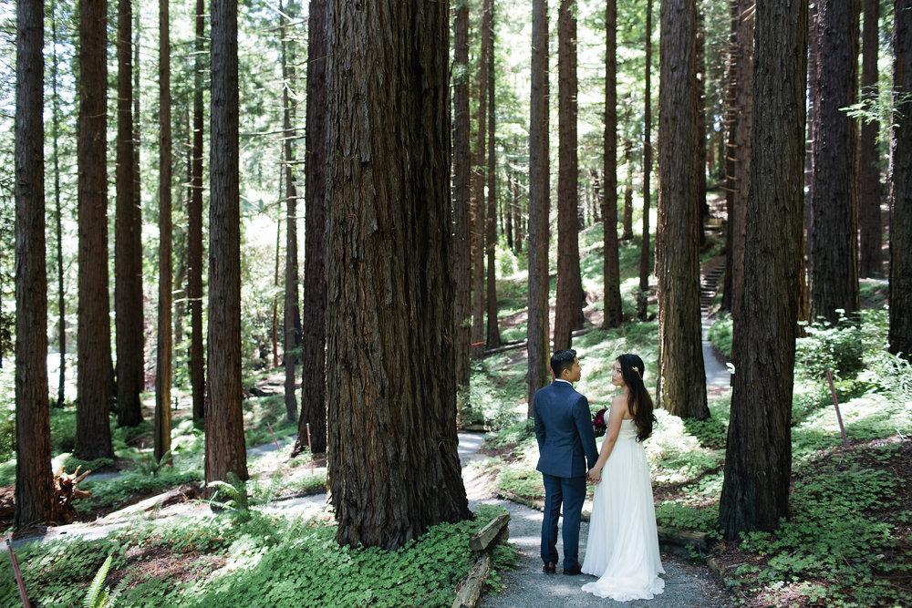 Wedding-Redwood-Grove-Berkeley-030.JPG