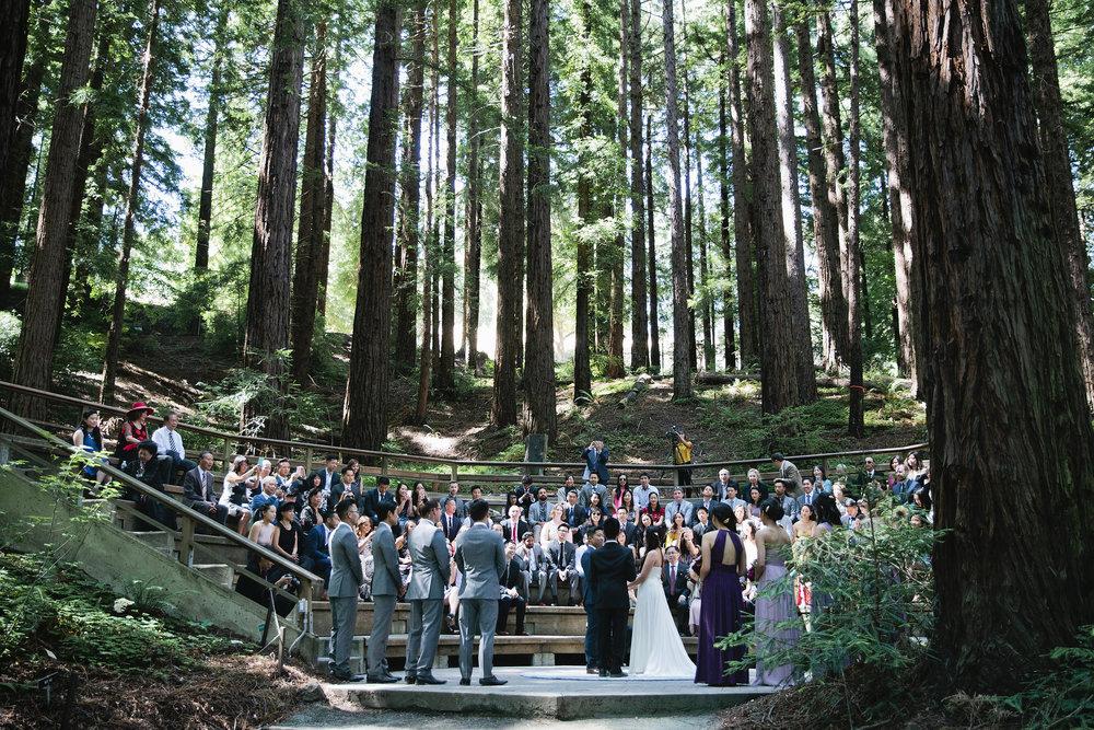 Wedding-Redwood-Grove-Berkeley-042.JPG
