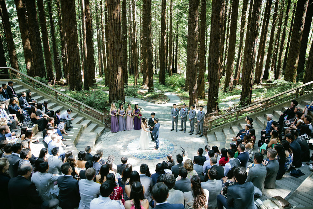 Wedding-Redwood-Grove-Berkeley-046.JPG
