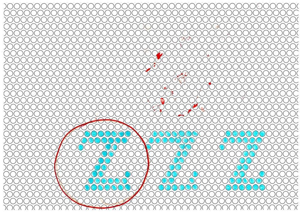 as-bubble_sketches-14.jpg