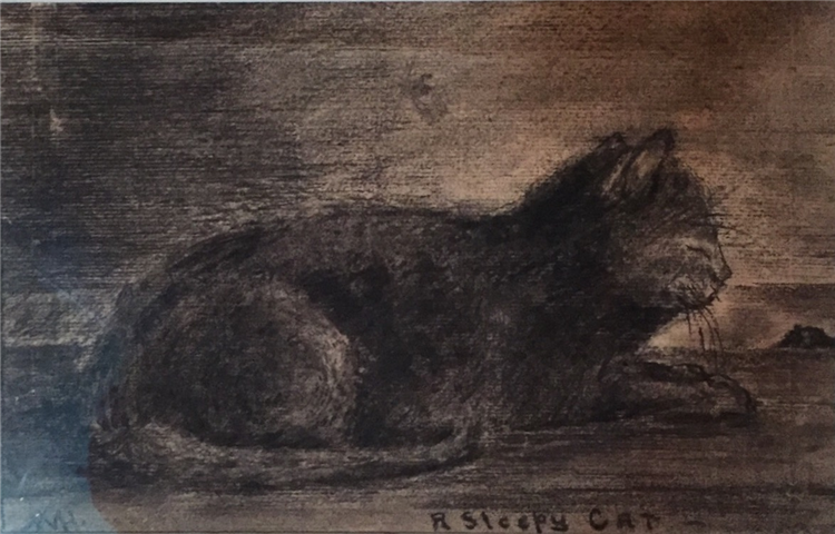 A Sleepy Cat,  Charcoal on Paper