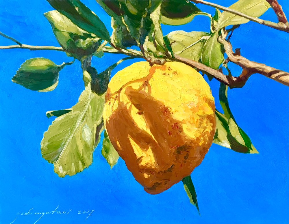 Lemon in the Sun, 2017