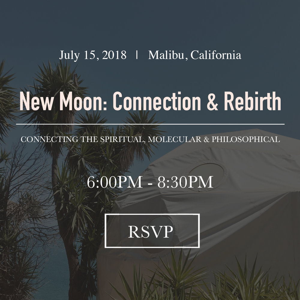 The New Moon: Connection & Rebirth   Connecting The Spiritual, Molecular & Philosophical  The New Moon positions us with an opportunity to recalibrate, and reset our intention so that we may approach the coming chapter of our lives with greater conscious connectivity.