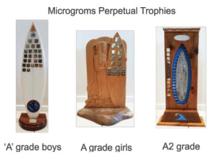 MicroGroms Perpetual Trophies