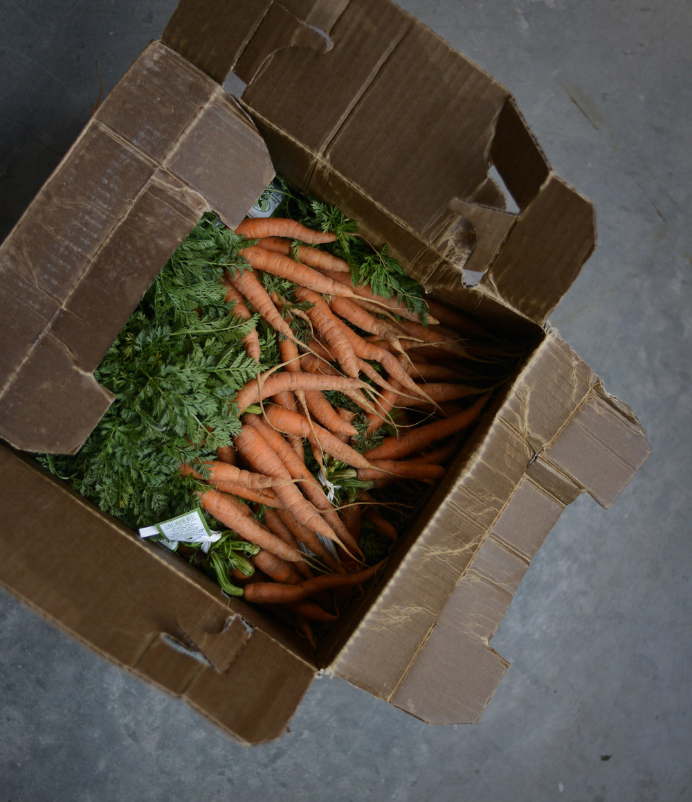 carrots in box.jpg