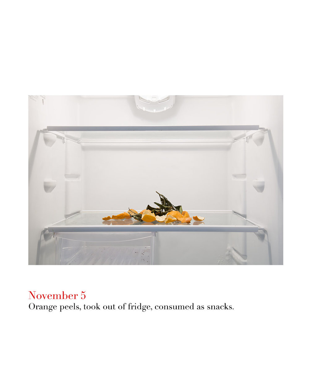 Nov 5 oranges copy.jpg