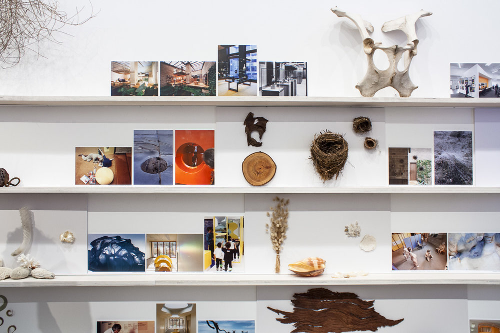 A collection of objects and imagery curated by Mary Featherson with Vicky Featherston Tu mapping Mary and Grants fascination for nature which inspire their design