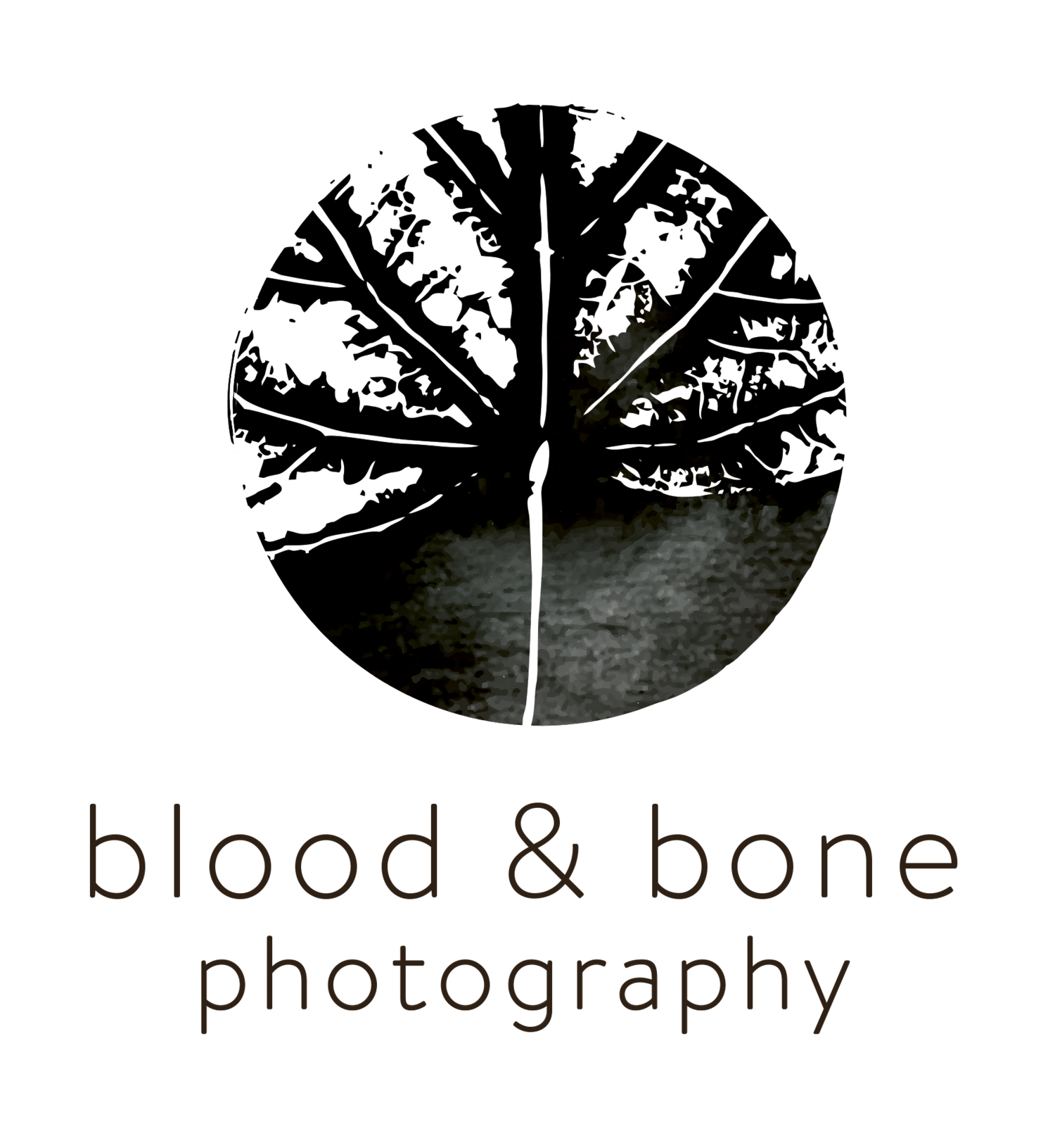 Blood and Bone Photography