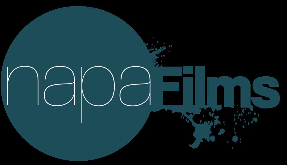 napa_logo(ei taustaa).png